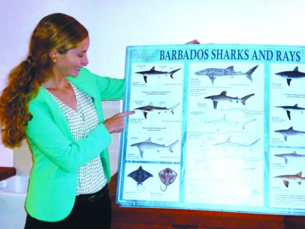 Nikola Simpson, Marine Biologist and Fisheries Consultant at Food and Agriculture Organisation (FAO) of the United Nations in Barbados, showing the poster of 'Barbados Sharks and Rays', which will be distributed to schools as part of an education and outreach plan.