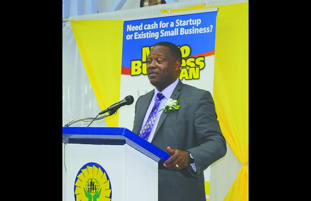Minister of Industry, International Business, Commerce and Small Business Development, Donville Inniss delivering the feature address.